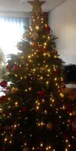 adqe-christmas-tree
