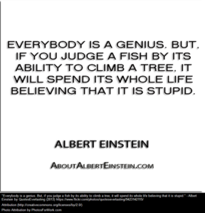 einstein-fish-climb-tree-ra