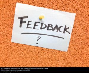feedback-esef