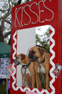Kissing_Booth_Dog_Day_2007_NOLA