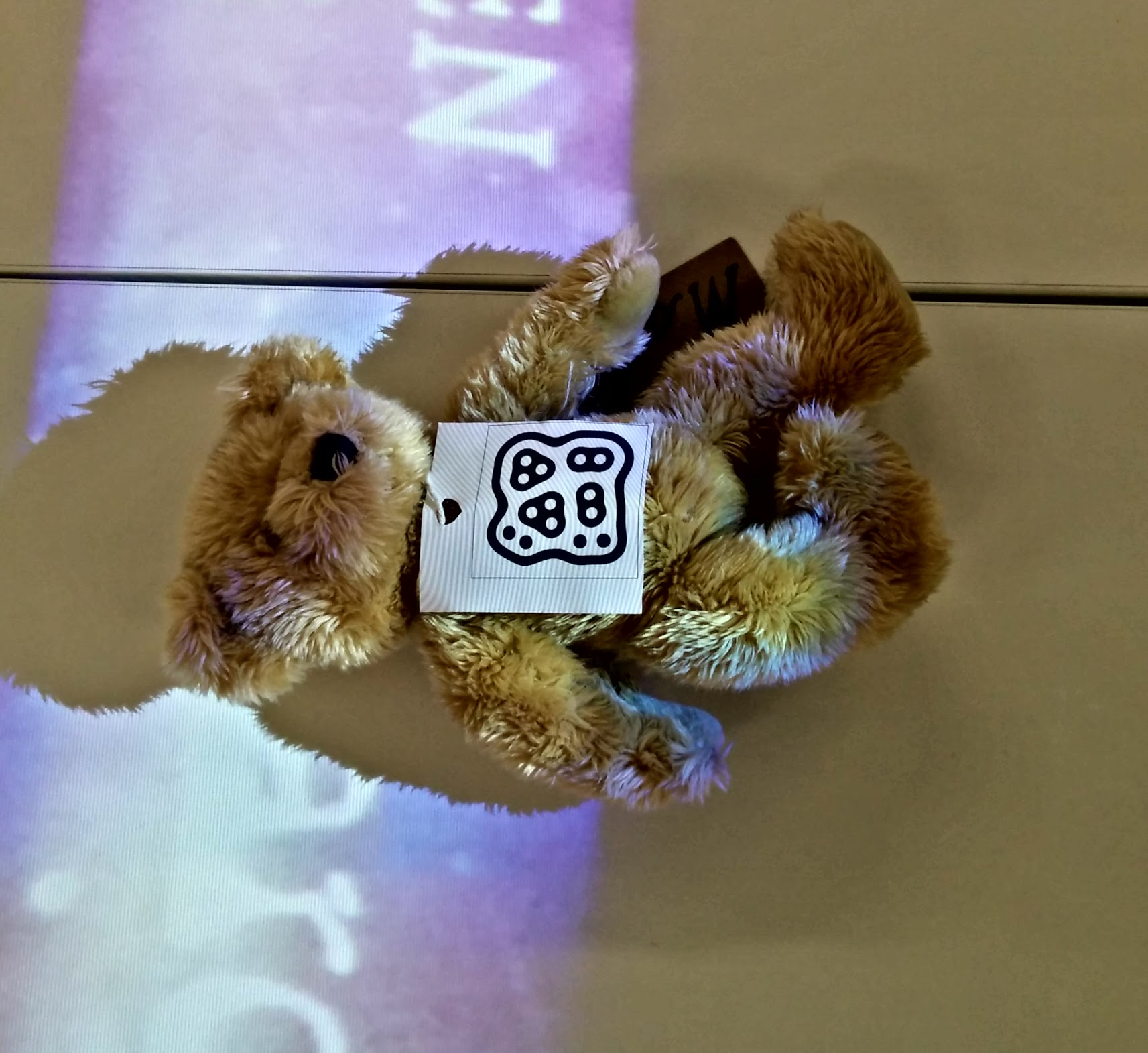 'Mo', the Mass Observation Archive mascot, volunteers to pilot the fiducial tracker.
