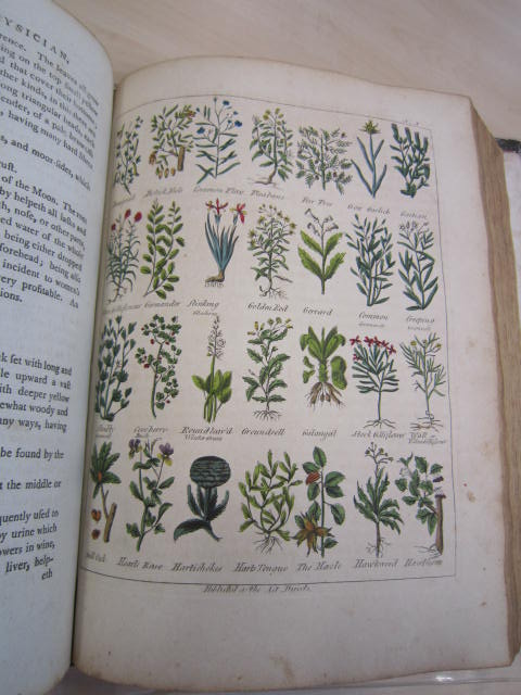 SxBaker/161 - Culpeper's English physician; and complete herbal. To which are now first added upwards of one hundred additional herbs... Beautified and enriched with engravings of upwards of four hundred and fifty different plants, and a set of anatomical figures. London: printed for the author, and sold at the British Directory Office; and by Champante and Whitrow, [1789?]