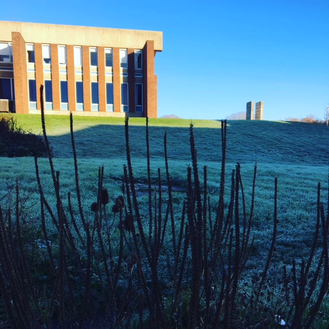 Picture of frosty Library slope