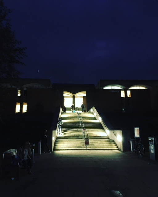 Library steps by night
