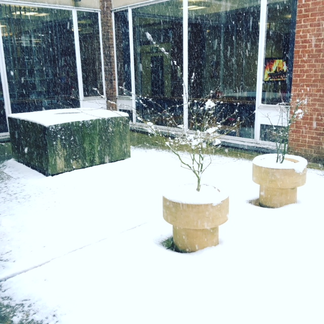 Library courtyard in snow