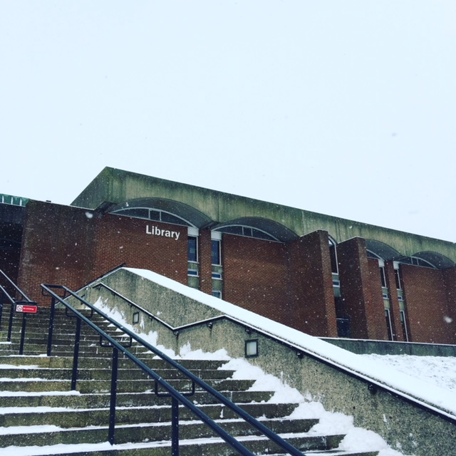 Library steps in snow