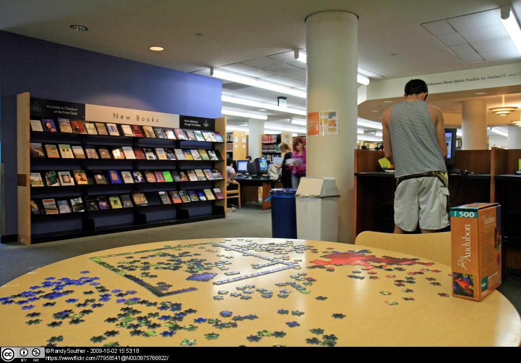 Solving puzzles at the library