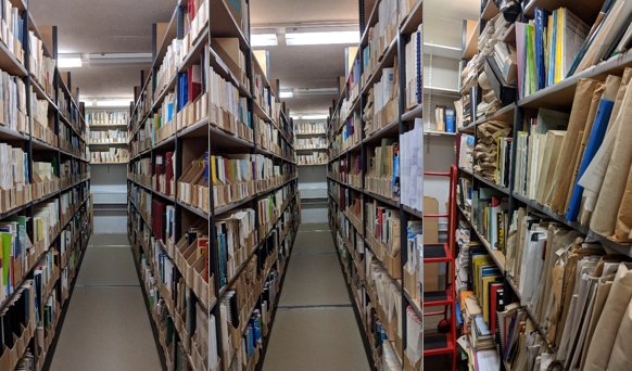A picture of some of the collections from the BLDS basement