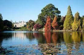 Autumn foliage at Sheffield Park Gardens - Sussex Bloggers