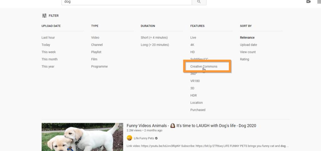 screenshot of CC search in YouTube
